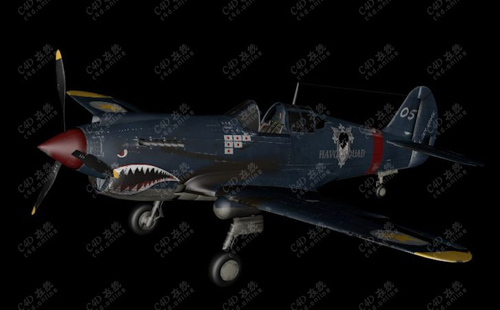 P-40战机鲨鱼头战斗机模型