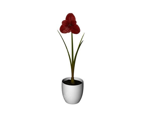 一支红花摆件装饰盆栽模型