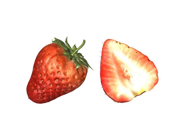 草莓水果模型