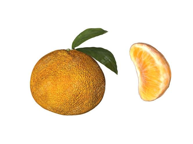 橙子橘子水果模型
