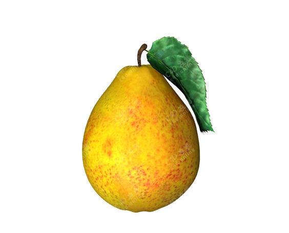 梨子鸭梨贡梨水果模型