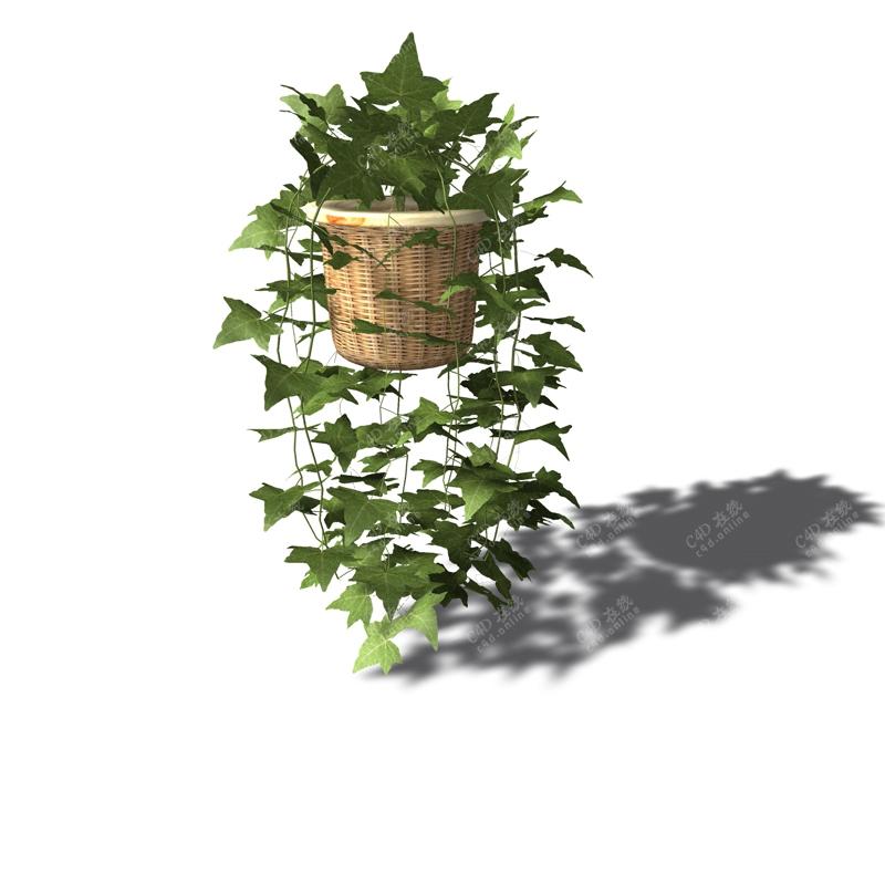 绿植吊篮盆栽植物模型